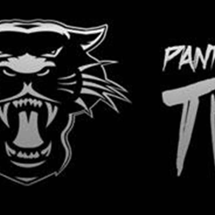 Panther Power 500