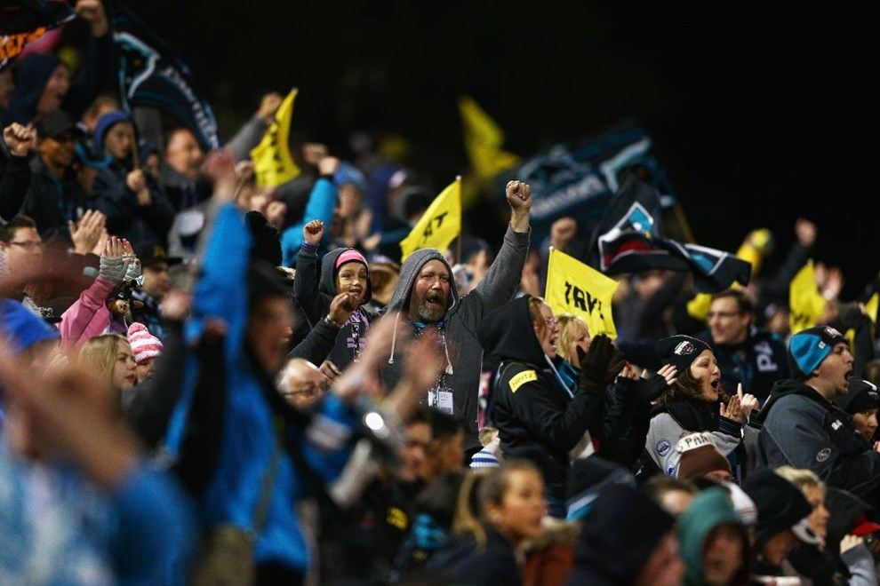 SYDNEY, AUSTRALIA - JULY 03: Panthers fans celebrate a try during the round 17 NRL match between the Penrith Panthers and the South Sydney Rabbitohs at Pepper Stadium on July 3, 2015 in Sydney, Australia.  (Photo by Cameron Spencer/Getty Images)