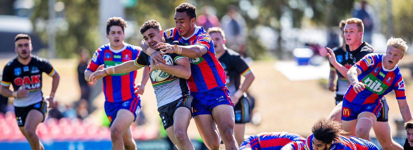 Young Panthers cut down by Knights