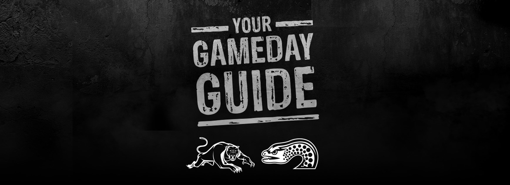 Gameday Guide: Panthers v Eels