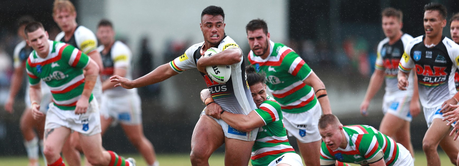 Positive signs as Panthers roll the Rabbitohs