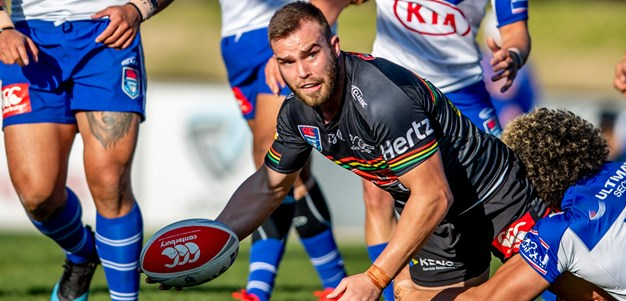 Panthers defeat in-form Bulldogs