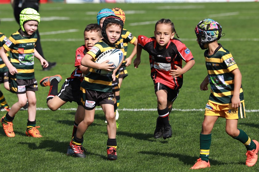 Young stars from the Windsor Wolves and St Clair Comets get a taste of playing at Panthers Stadium prior to an NRL fixture.